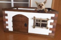 漆喰・犬・小屋・木製犬小屋を漆喰うま〜くヌレールでDIY!